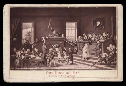Apes in Charge of the Judiciary Rare Comical Victorian Cabinet Photo
